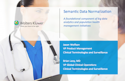 semanticdatanormalization